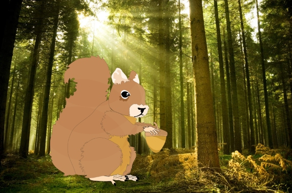 écureuil en foret 20 cm