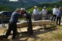 valsonne-la-sixieme-fete-de-la-batteuse-a-mis-les-tracteurs-anciens-a-l-honneur